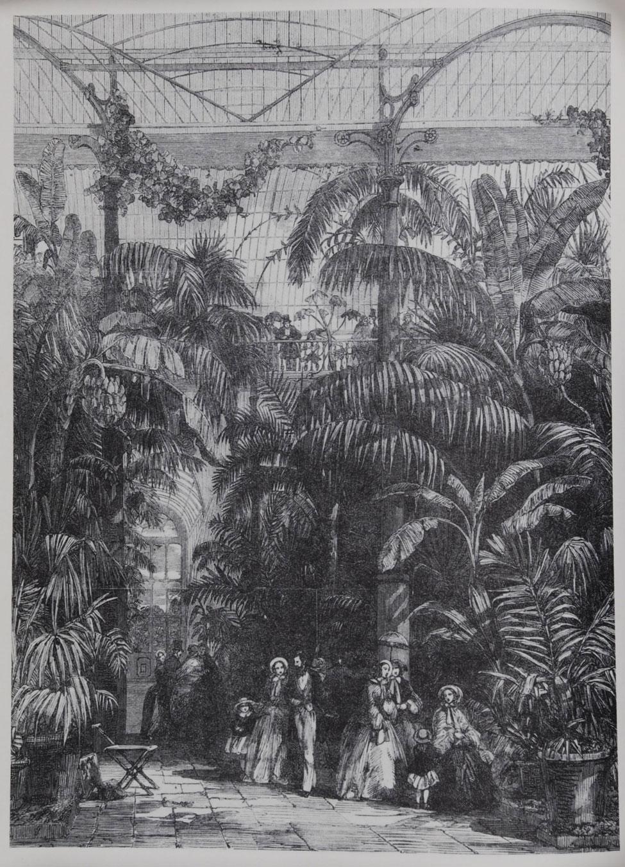 Kew; the History of the Royal Botanic Gardens
