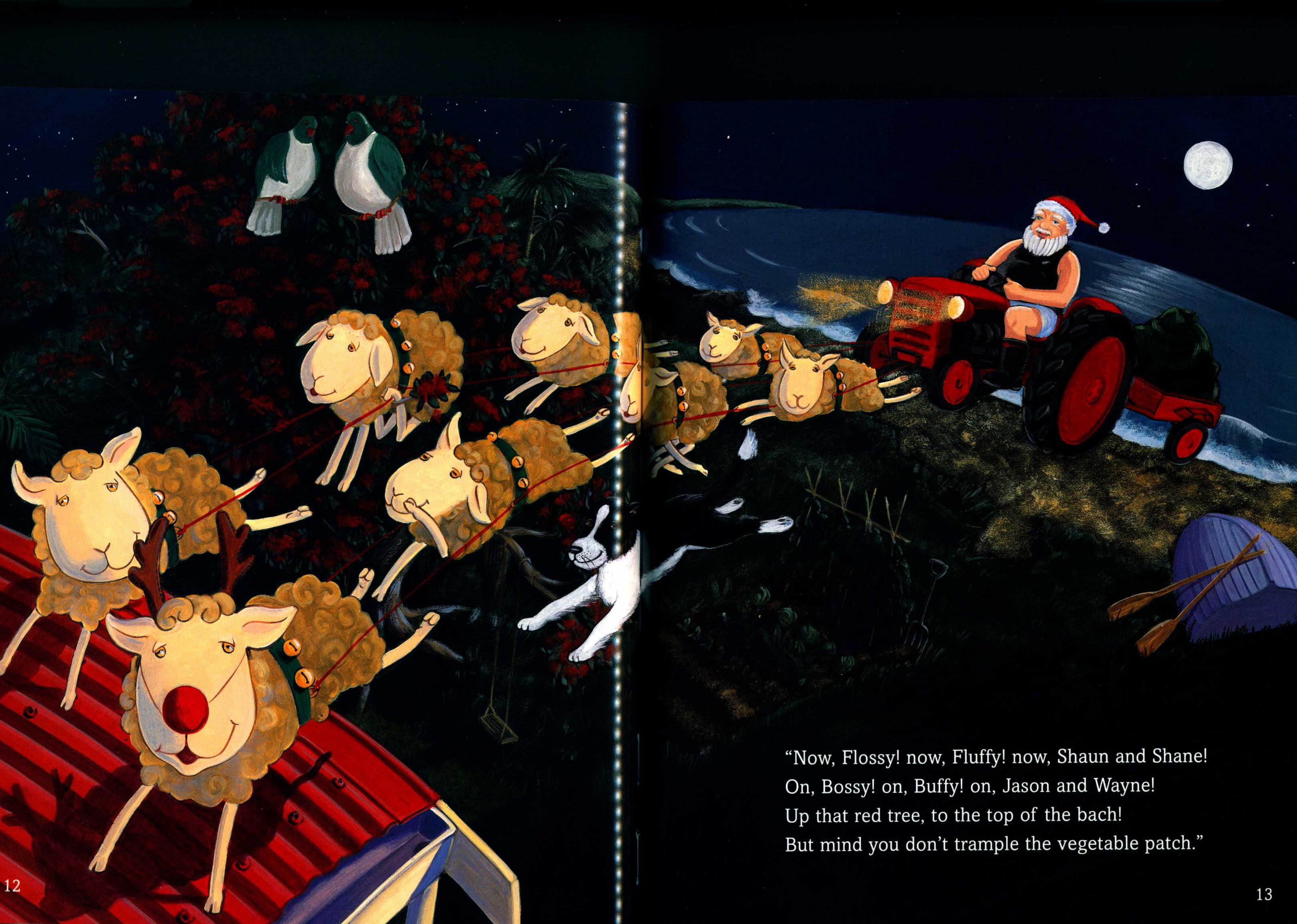 Yvonne Morrison. A kiwi night before Christmas. Auckland: Scholastic, 2003.