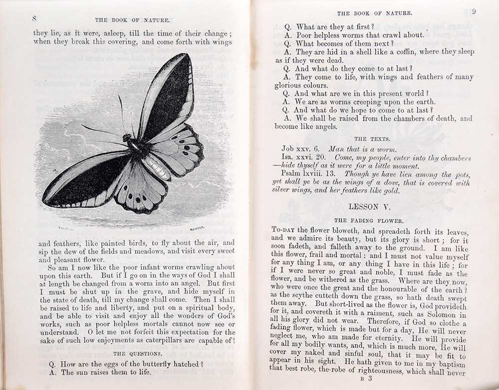 William Jones. <em>The book of nature: or, the true sense of things explained and made easy to the capacities of children.</em> London: Society for Promoting Christian Knowledge, 1845.