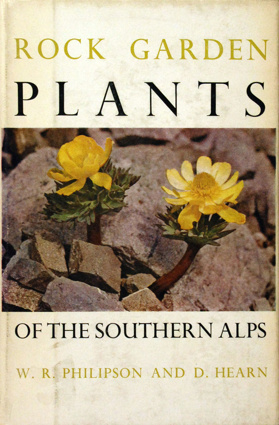 W. R. Philipson and D. Hearn. Rock Garden Plants of the Southern Alps. <i>Christchurch: The Caxton Press, 1962.</i>